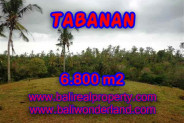 Magnificent Property for sale in Bali, land for sale in Tabanan Bali – TJTB140