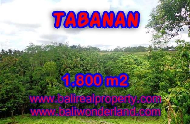 Land in Tabanan Bali for sale, nice view in Tabanan Penebel Bali – TJTB088