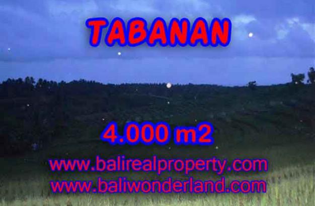 Land for sale in Tabanan Bali, Wonderful view in Tabanan Selemadeg – TJTB096