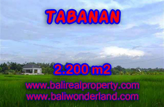 Land for sale in Tabanan, Magnificent view in Tabanan kediri Bali – TJTB097