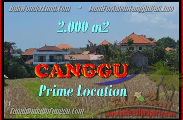 FOR SALE Beautiful 2.000 m2 LAND IN Canggu Kayutulang BALI TJCG167