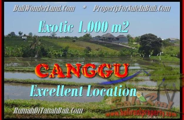 FOR SALE Beautiful 1.000 m2 LAND IN Canggu Kayutulang BALI TJCG168