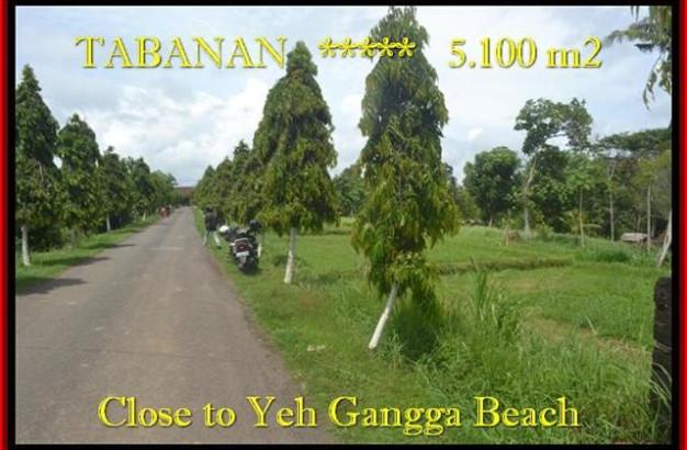 Affordable PROPERTY 5.100 m2 LAND FOR SALE IN TABANAN BALI TJTB186