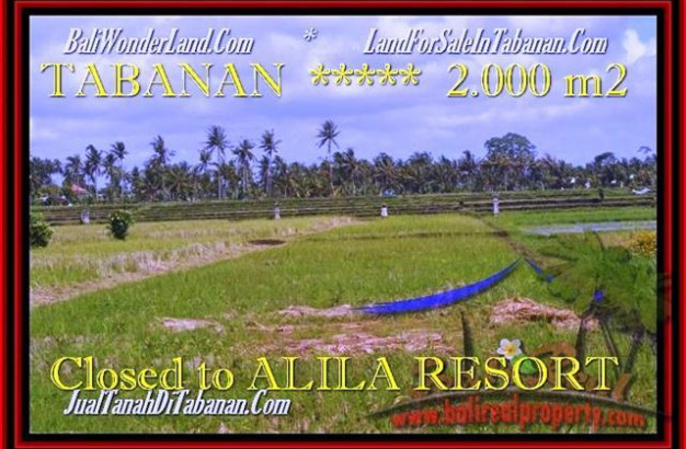 FOR SALE Beautiful 2.000 m2 LAND IN TABANAN TJTB187
