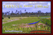 Magnificent 2.000 m2 LAND FOR SALE IN TABANAN BALI TJTB187