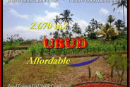 Exotic PROPERTY LAND IN Ubud Tegalalang FOR SALE TJUB451