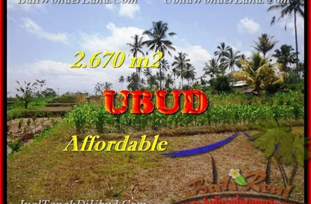 FOR SALE Magnificent PROPERTY LAND IN Ubud Tegalalang TJUB451