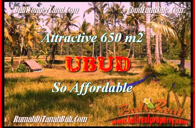 FOR SALE Affordable LAND IN UBUD TJUB455