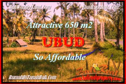 Exotic UBUD BALI LAND FOR SALE TJUB455
