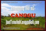 700 m2 LAND SALE IN Canggu Kayu tulang BALI