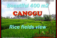 Beautiful PROPERTY Canggu Pererenan BALI LAND FOR SALE TJCG156