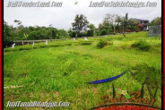 FOR SALE Exotic LAND IN CANGGU BALI TJCG161