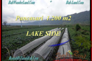 LAND FOR SALE IN Tabanan Bedugul BALI