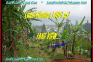 Beautiful PROPERTY 1.000 m2 LAND FOR SALE IN Tabanan Bedugul