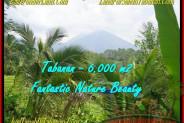 LAND SALE IN Tabanan Penebel TJTB182