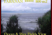 Beautiful PROPERTY 800 m2 LAND SALE IN TABANAN BALI TJTB183