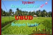 Affordable PROPERTY 300 m2 LAND FOR SALE IN UBUD BALI TJUB447