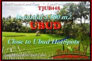Affordable PROPERTY 3.800 m2 LAND FOR SALE IN UBUD BALI TJUB448