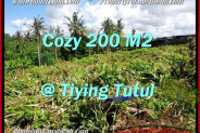 Magnificent Canggu Pererenan LAND FOR SALE