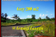 Affordable Canggu Mengening BALI 200 m2 LAND FOR SALE TJCG171
