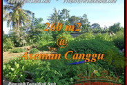 Affordable PROPERTY 260 m2 LAND FOR SALE IN CANGGU TJCG174