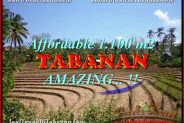 Magnificent PROPERTY 1.100 m2 LAND SALE IN TABANAN BALI TJTB170