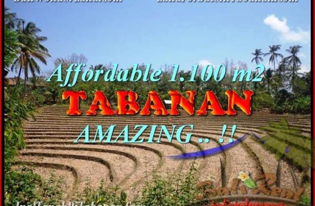 Exotic 1.100 m2 LAND FOR SALE IN TABANAN BALI TJTB170