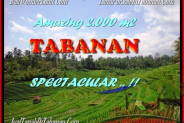FOR SALE Magnificent 2.000 m2 LAND IN TABANAN TJTB172