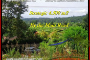 Affordable Tabanan Bedugul BALI LAND FOR SALE