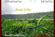 Beautiful PROPERTY 20,000 m2 LAND IN Tabanan Bedugul FOR SALE TJTB195