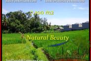 Affordable LAND FOR SALE IN Tabanan Tanah Lot BALI TJTB197