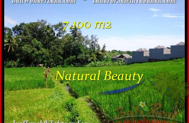 FOR SALE Exotic PROPERTY 7,100 m2 LAND IN TABANAN BALI TJTB197
