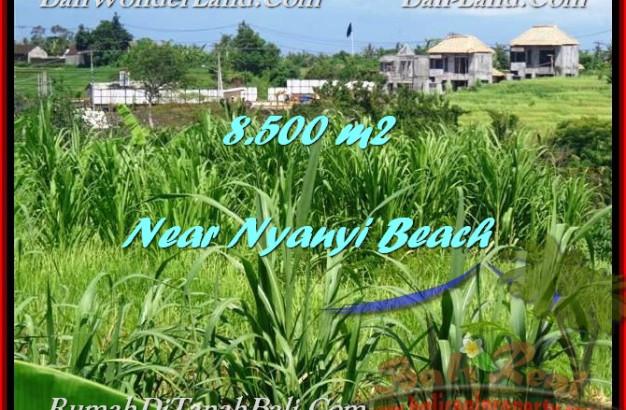 Affordable PROPERTY 8,500 m2 LAND SALE IN TABANAN BALI TJTB198