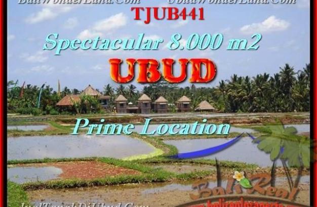 FOR SALE Affordable LAND IN Sentral Ubud TJUB441