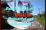 Affordable Ubud Pejeng LAND FOR SALE TJUB442