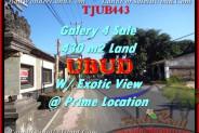 LAND IN Sentral Ubud FOR SALE TJUB443