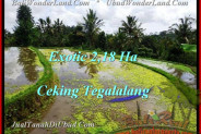 Affordable UBUD 21,800 m2 LAND FOR SALE TJUB471