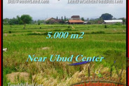FOR SALE Beautiful PROPERTY LAND IN Ubud Center BALI TJUB474