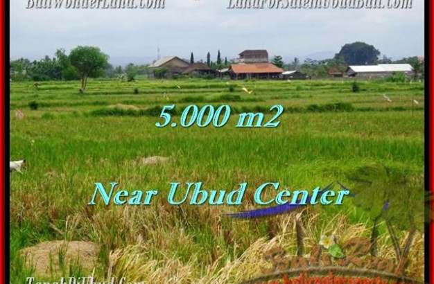 Affordable UBUD 5,000 m2 LAND FOR SALE TJUB474