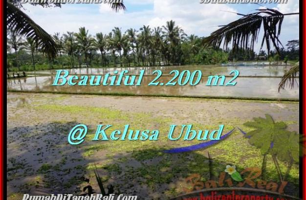 Affordable 2,200 m2 LAND IN UBUD FOR SALE TJUB475