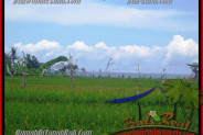 Affordable LAND FOR SALE IN Canggu Cemagi TJCG140