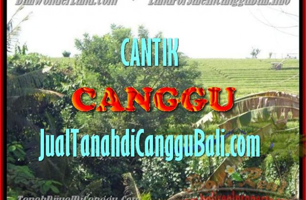 Magnificent LAND FOR SALE IN Canggu Pererenan TJCG143