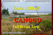 Beautiful LAND SALE IN Canggu Pererenan TJCG162