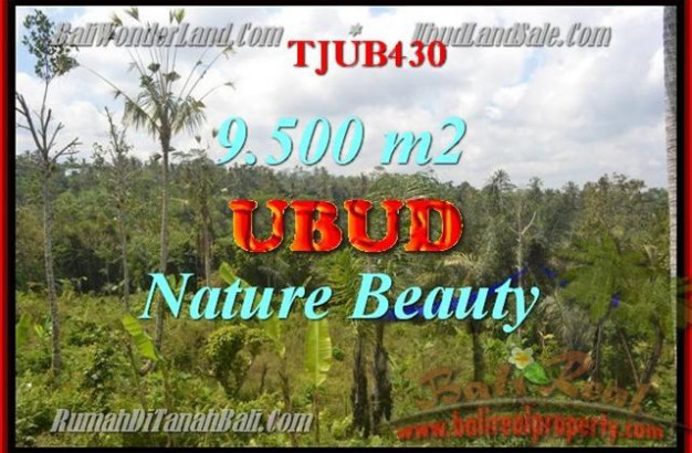 FOR SALE Magnificent PROPERTY LAND IN Ubud Payangan BALI TJUB430