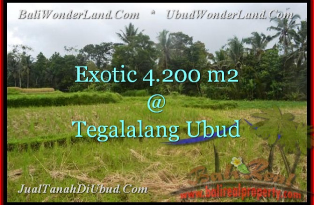 Magnificent LAND FOR SALE IN Ubud Tegalalang BALI TJUB461