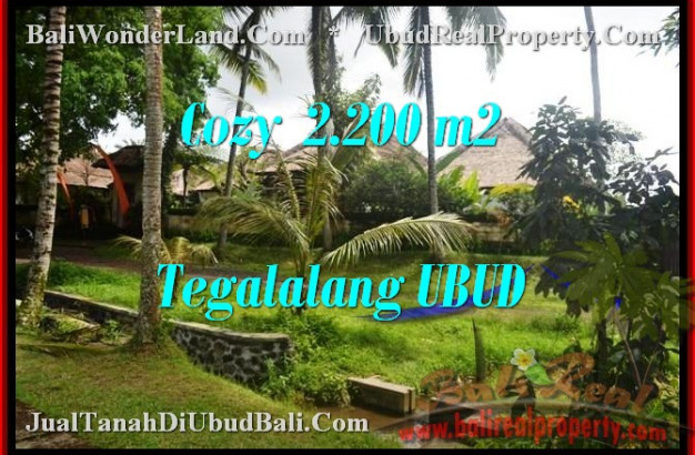 FOR SALE Exotic LAND IN Ubud Tegalalang TJUB462