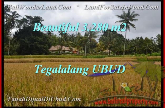 Affordable LAND SALE IN Ubud Tegalalang TJUB463
