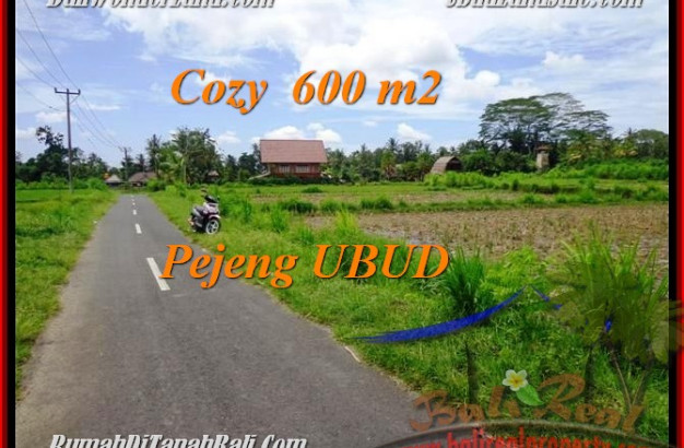 Beautiful PROPERTY UBUD BALI 600 m2 LAND FOR SALE TJUB465