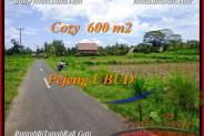 FOR SALE LAND IN Ubud Pejeng TJUB465