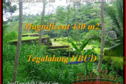FOR SALE Magnificent 430 m2 LAND IN UBUD TJUB466